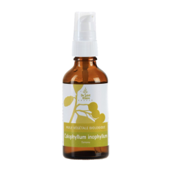 Calophyll Oil - 50ml - Organic