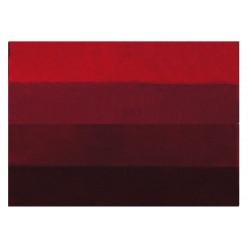 Tapis de bain Four 55x65 Rouge