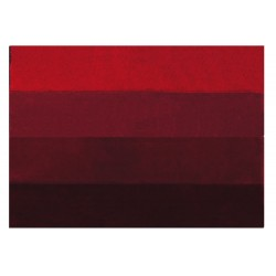 Four Bath Mat 55x65 Red